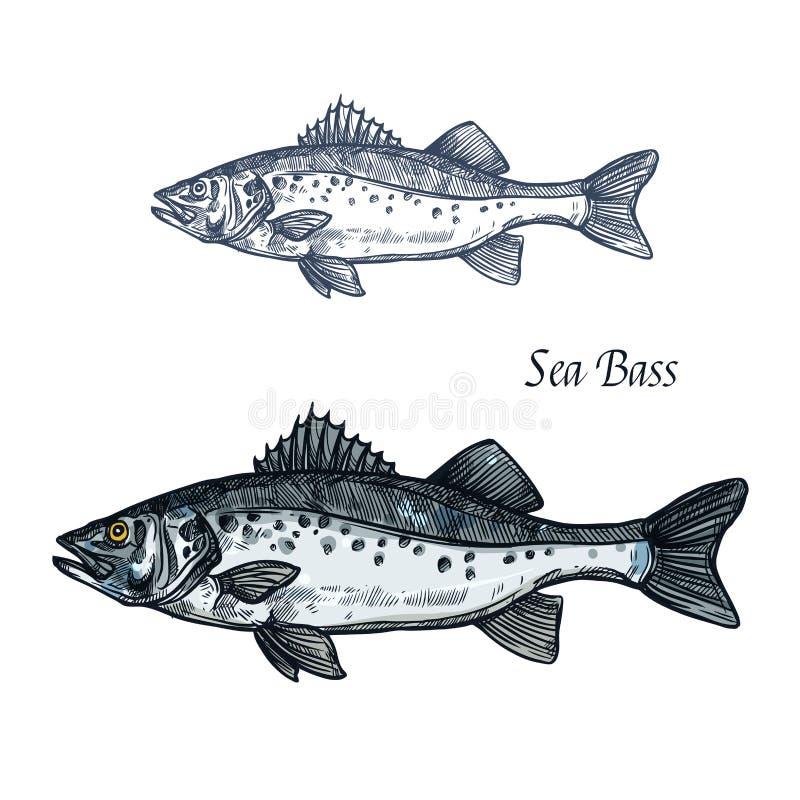 鲈鱼海鲜设计的鱼剪影 向量例证