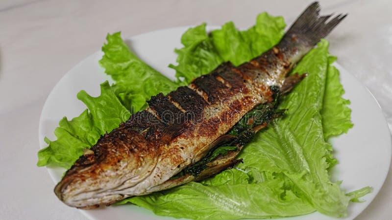鲈鱼,烤鲈鱼,食物,鱼,晚餐 库存照片