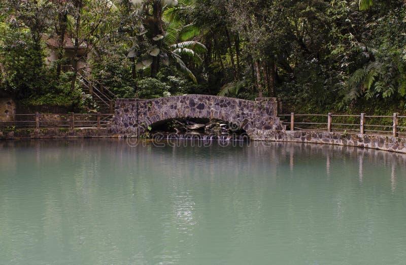 鲍诺重创的水池El Yunque波多黎各 图库摄影