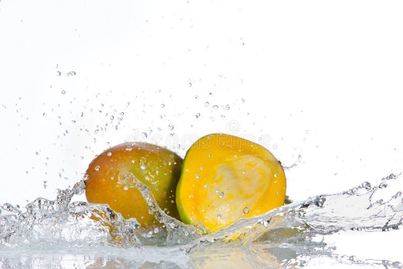 鲕梨果子用水飞溅 免版税库存照片