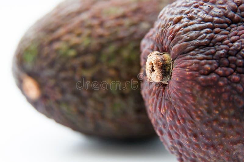 鲕梨果子细节 免版税库存照片