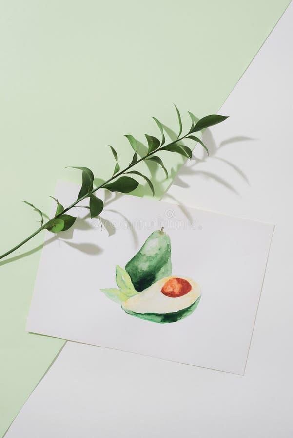鲕梨 热带夏天概念由鲕梨果子和手图画例证制成 免版税库存照片