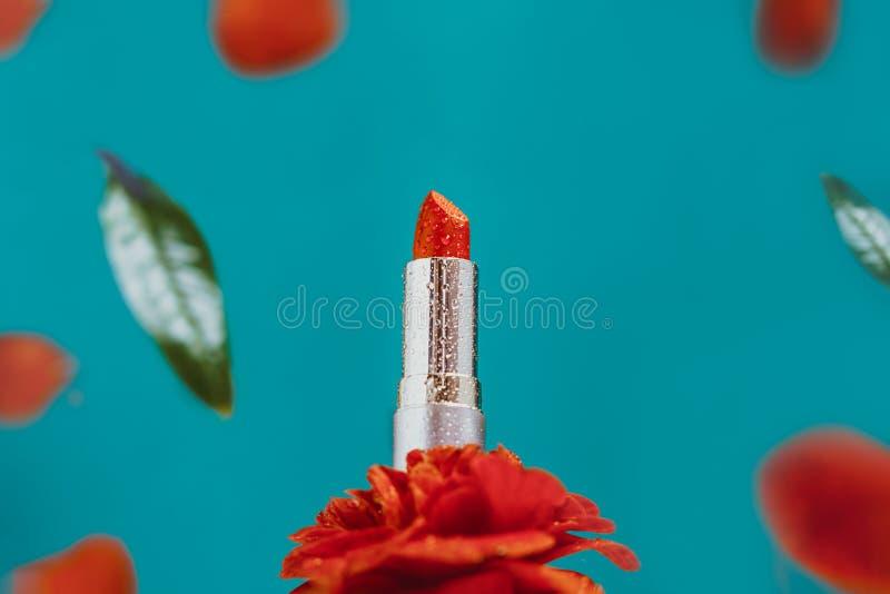 鲜红色唇膏,金管水滴,玫瑰花上,花瓣落花,蓝绿色 免版税库存图片