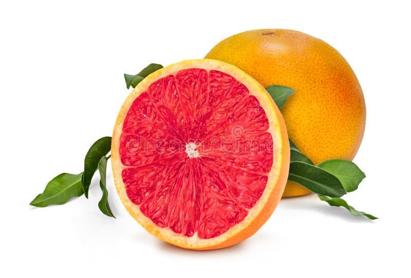 鲜红色的葡萄柚 库存图片