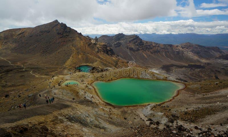 鲜绿色湖在Tongario国家公园,新西兰 库存照片