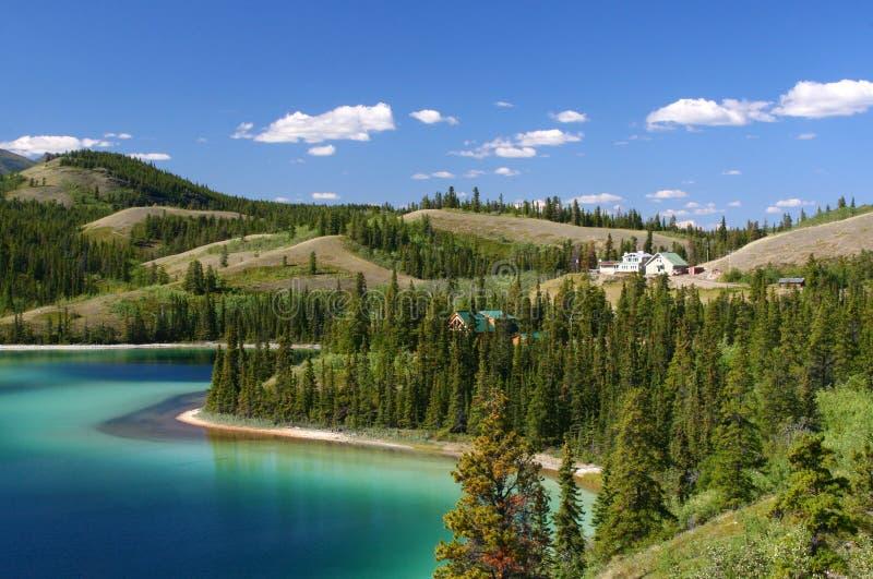 鲜绿色湖领土育空 库存图片