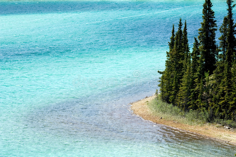 鲜绿色湖 库存图片