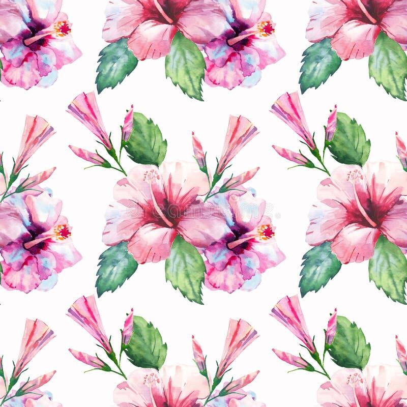 鲜绿色的草本热带美妙的夏威夷花卉夏天样式热带桃红色红色紫罗兰色蓝色开花木槿 皇族释放例证