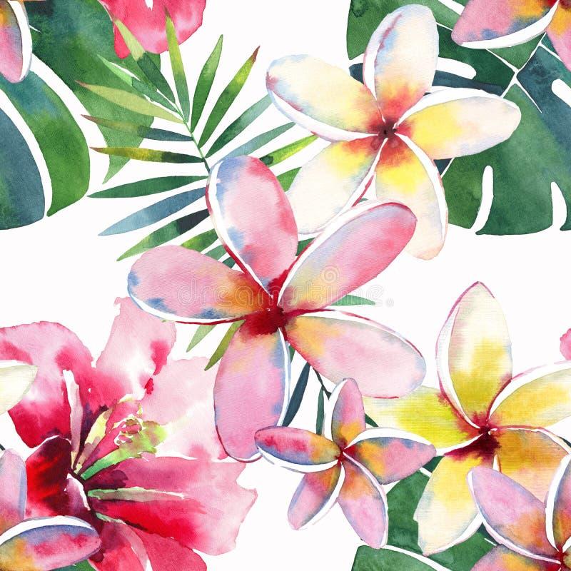 鲜绿色的草本热带美妙的夏威夷花卉夏天样式的热带棕榈叶和热带桃红色红色紫罗兰色蓝色花 库存例证