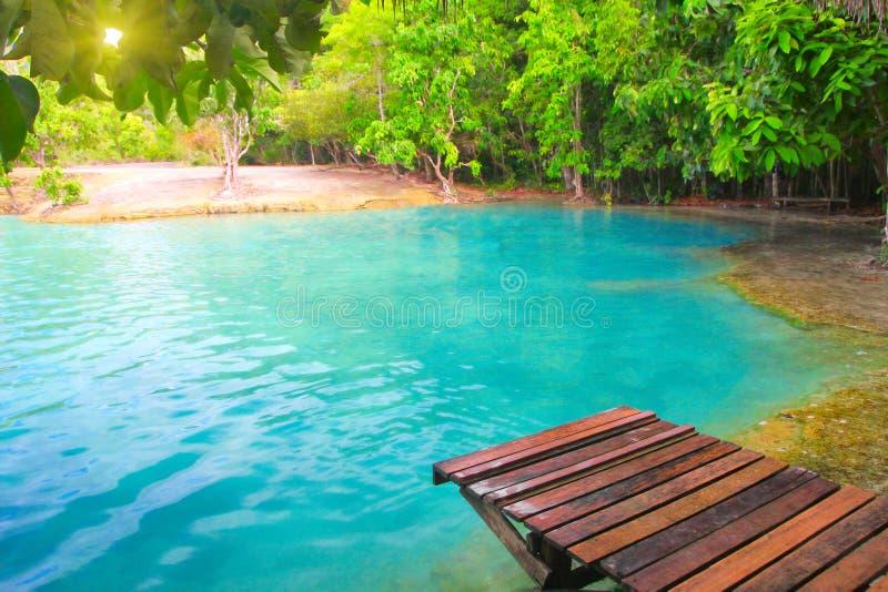 鲜绿色krabi池泰国 免版税库存图片