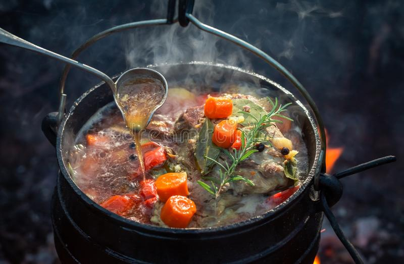 鲜美和自创猎人的炖煮的食物用肉和红萝卜 库存图片