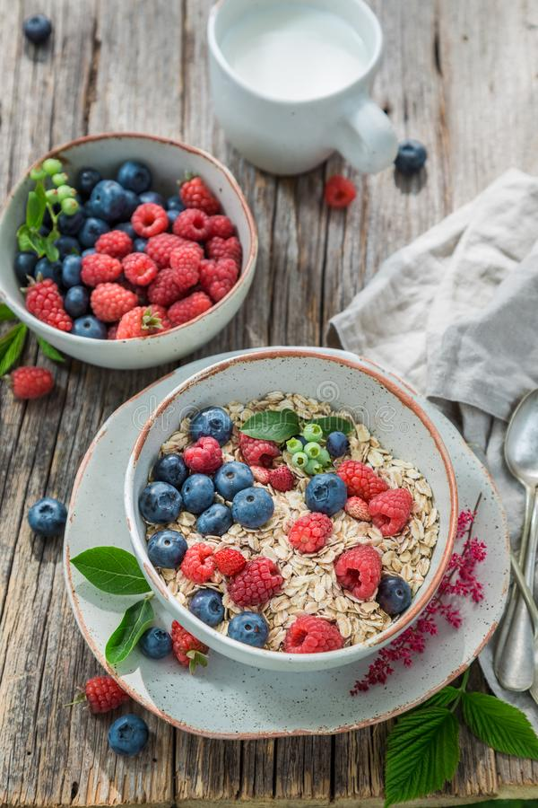 鲜美格兰诺拉麦片用牛奶和新鲜的莓果 库存图片