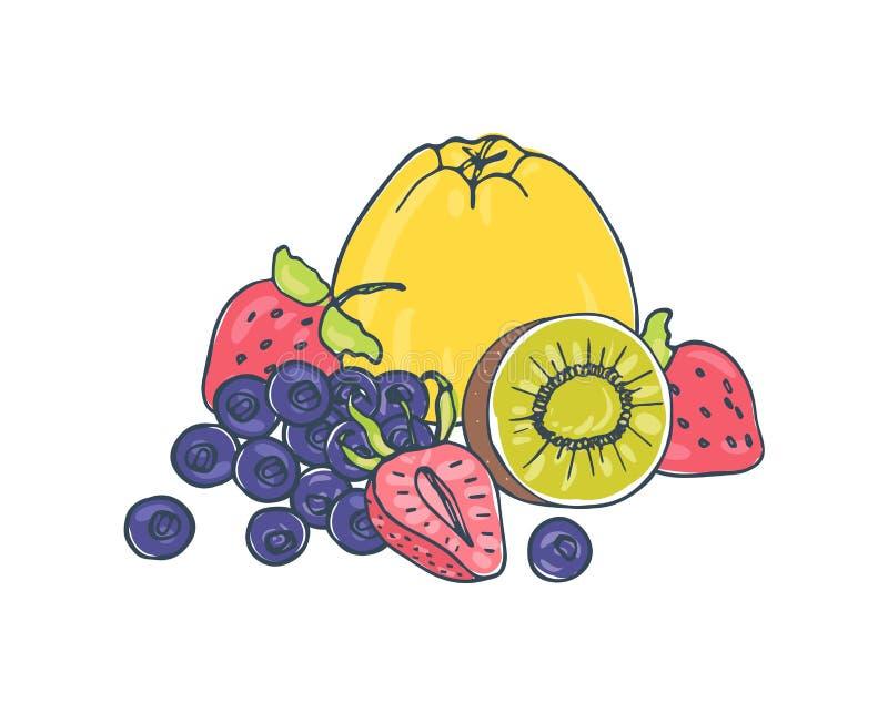 鲜美水多的说谎果子和的莓果一起隔绝在白色背景-苹果,蓝莓,整个和被切开的猕猴桃和 皇族释放例证