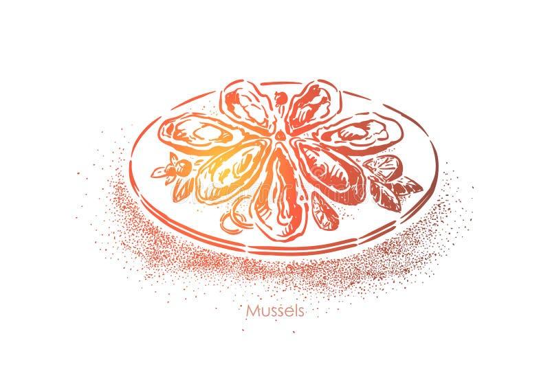 鲜美淡菜,传统海鲜餐馆盘,煮熟的软体动物,健康营养,精妙的晚餐 向量例证