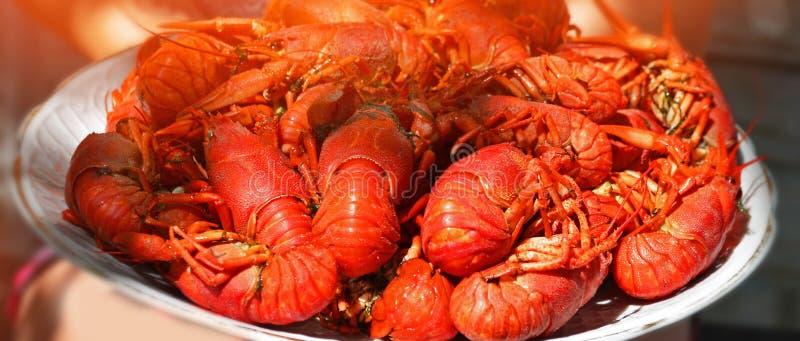 鲜美煮沸的小龙虾特写镜头,海鲜大板材  免版税库存照片
