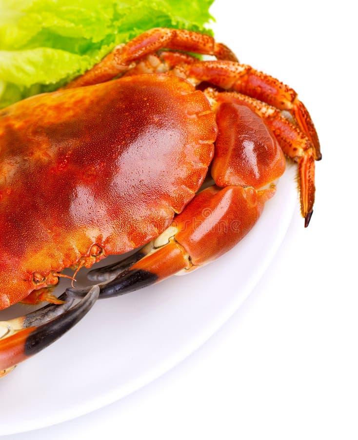 鲜美煮沸的螃蟹 免版税库存图片