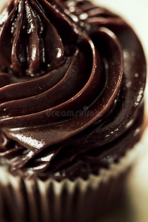 鲜美美丽的开胃巧克力自创杯形蛋糕o宏指令  免版税库存图片