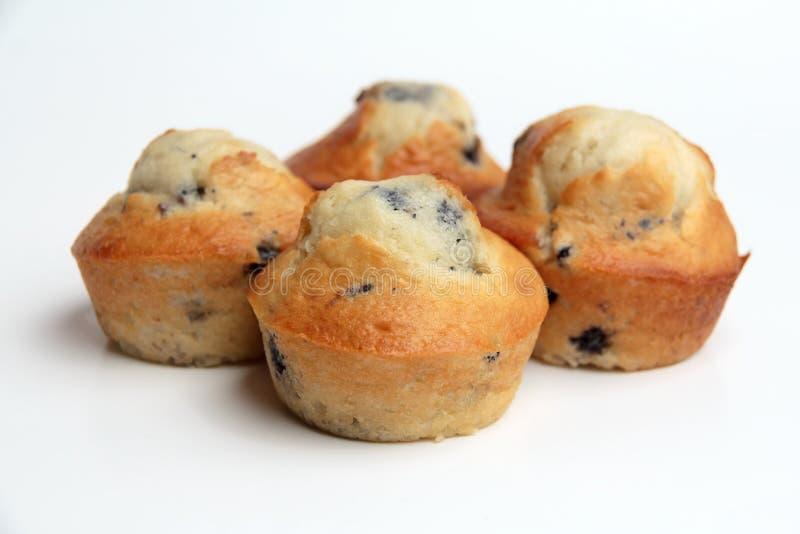 鲜美蓝莓松饼 图库摄影