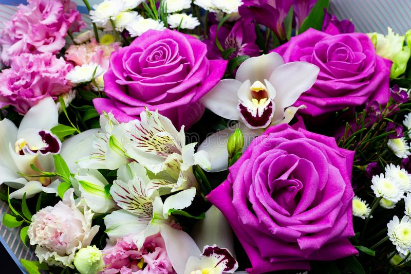 鲜花明亮的不同的花束在黑暗的背景的 库存图片