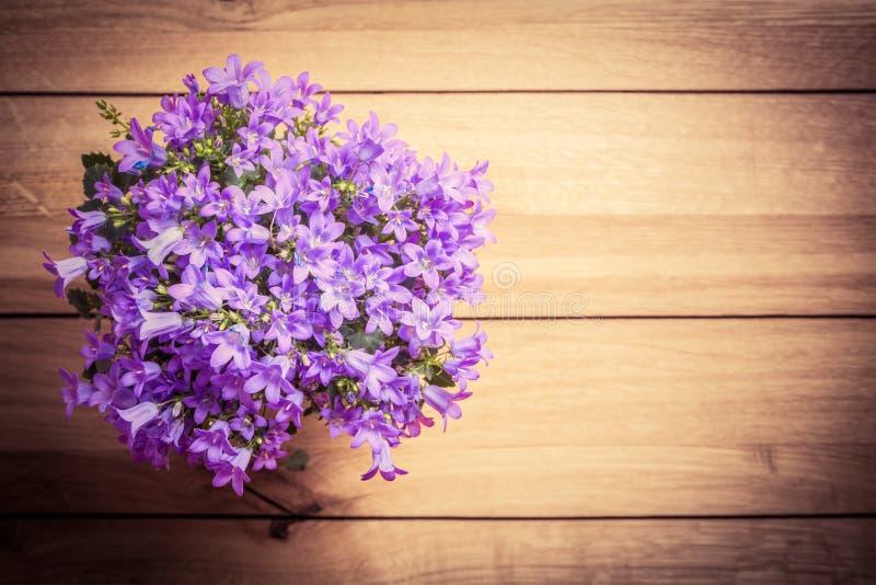 鲜花花束在土气木头的 丛风铃草或喀尔巴阡山脉的蓝铃花 免版税库存图片