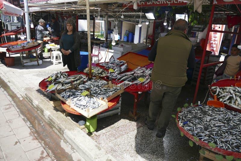 鲜鱼在主要市场上 免版税图库摄影