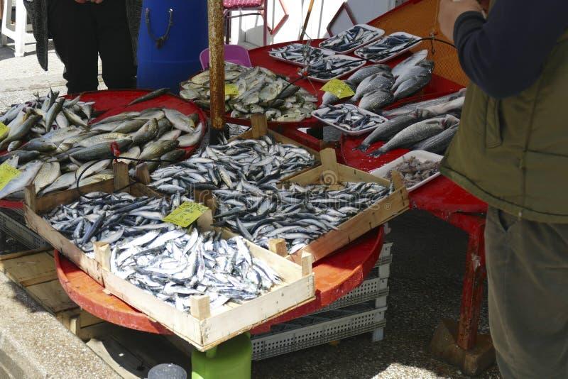 鲜鱼在主要市场上 免版税库存图片