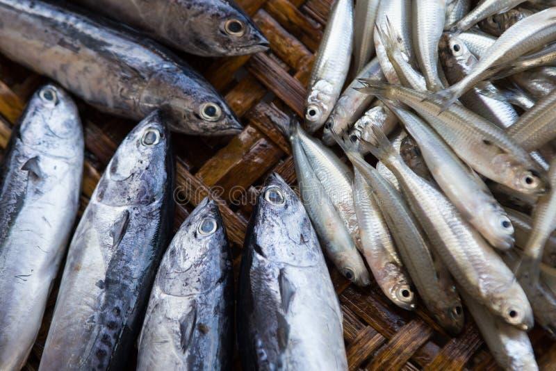 鲜鱼在市场上,关闭 图库摄影