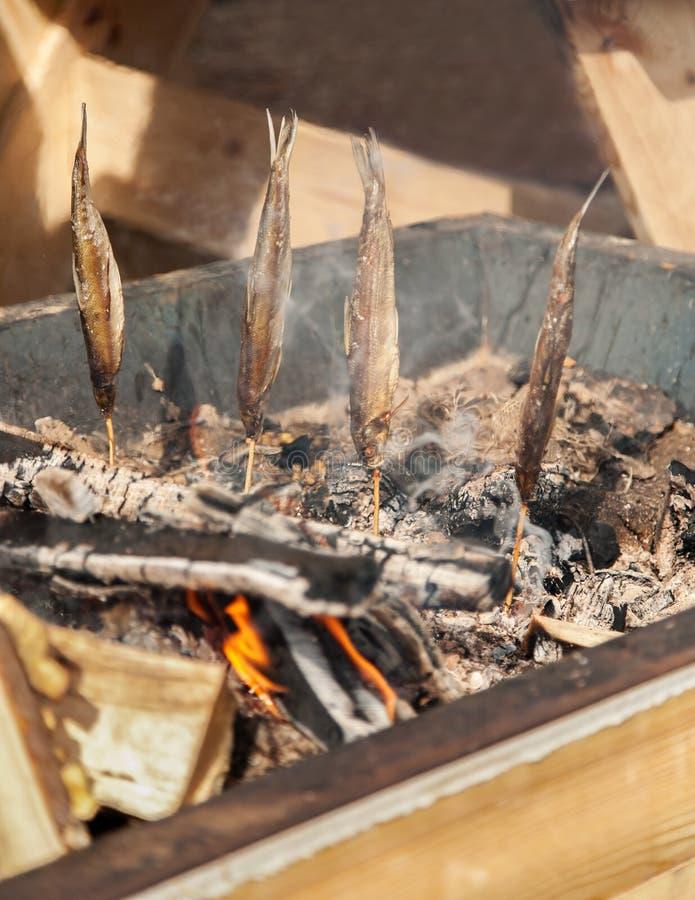 鲜鱼抽烟在热的煤炭的,垂直,选择聚焦 库存图片