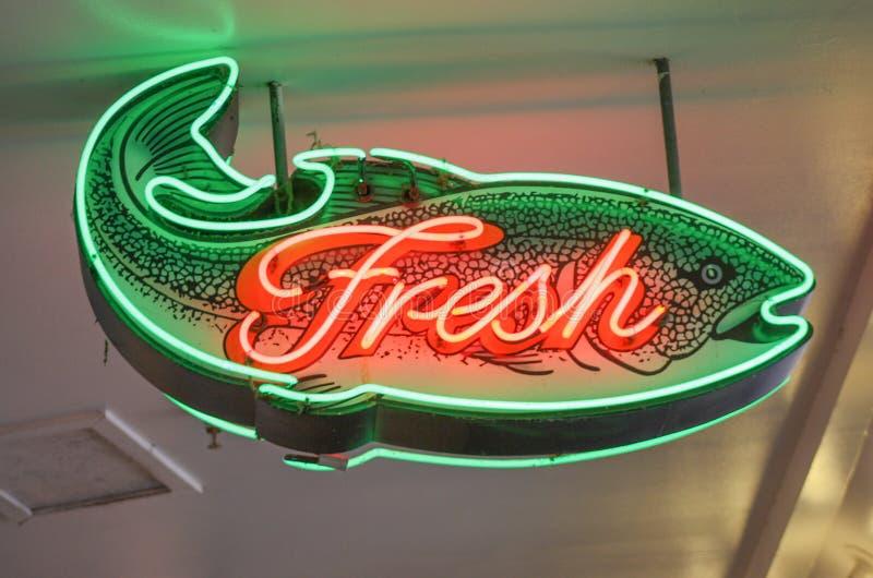 鲜鱼签字与霓虹橙色和绿色概述 免版税库存图片