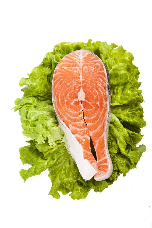 鲜鱼 免版税图库摄影