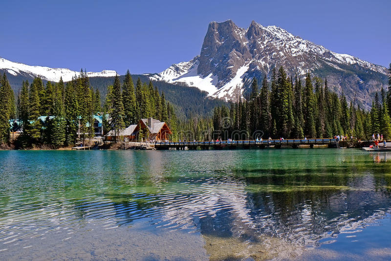 鲜绿色湖在幽鹤国家公园在不列颠哥伦比亚省 免版税库存图片