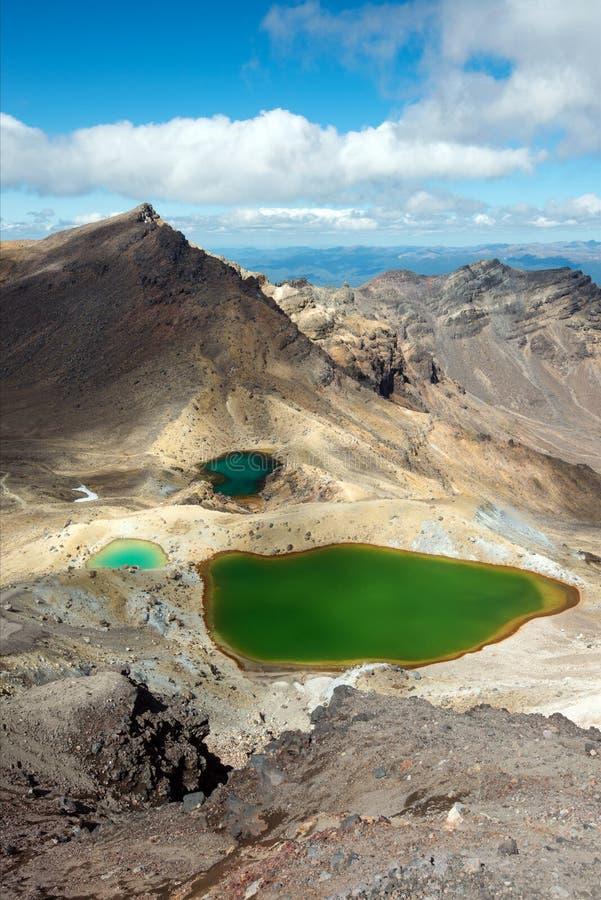 鲜绿色湖新西兰 免版税库存照片