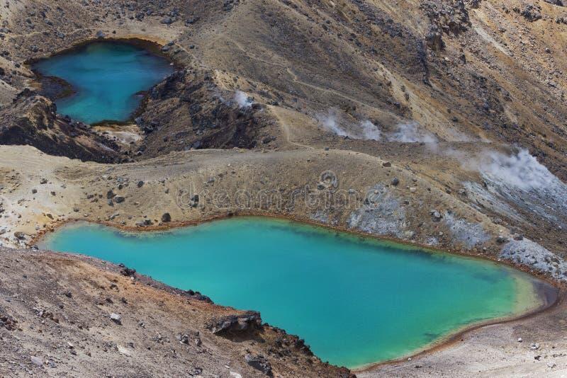 鲜绿色湖新西兰 免版税图库摄影