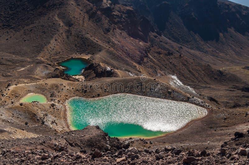 鲜绿色湖, Tongariro国家公园 库存照片