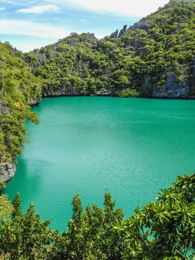 鲜绿色盐水湖 库存图片