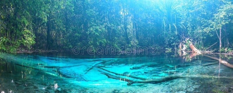 鲜绿色蓝色水池 krabi泰国 免版税库存图片