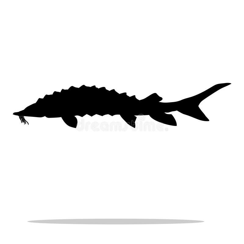 鲟鱼鱼黑色剪影水生动物 皇族释放例证