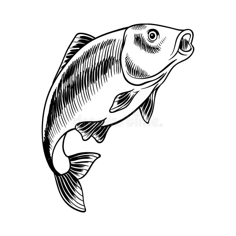 鲤鱼手拉的海鲜黑白例证 库存例证