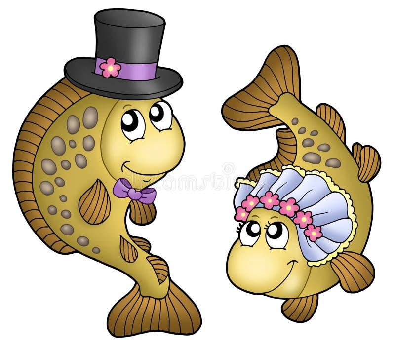 鲤鱼逗人喜爱的婚礼 皇族释放例证