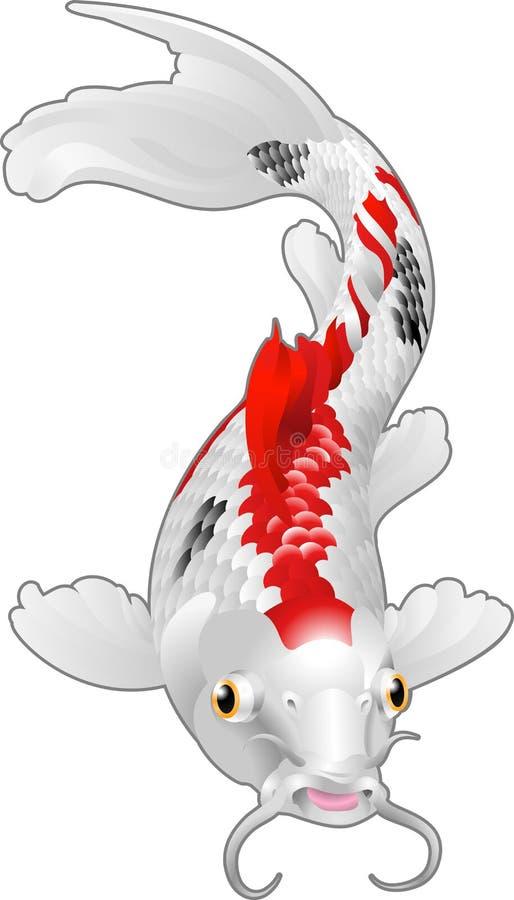 鲤鱼鱼koi东方人 皇族释放例证