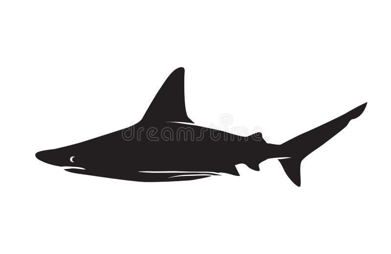 鲨鱼传染媒介现出轮廓象 库存例证