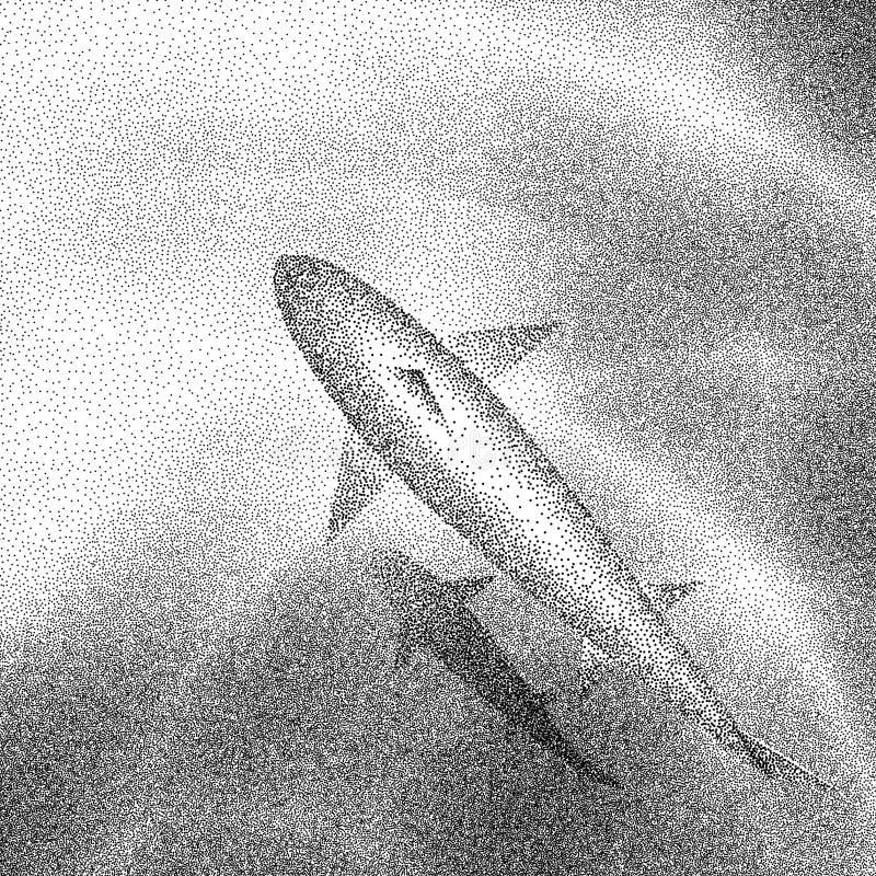 鲨鱼游泳的鸟瞰图在清楚的水中 免版税库存图片