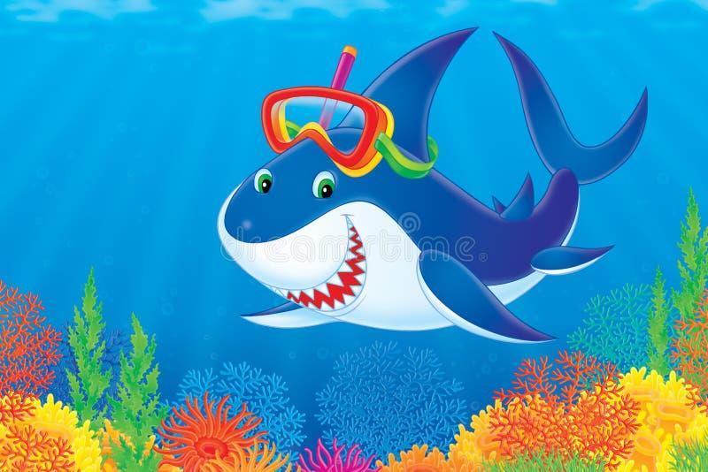 鲨鱼 向量例证