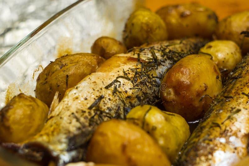 鲭鱼用在烤箱烘烤的土豆 免版税库存图片