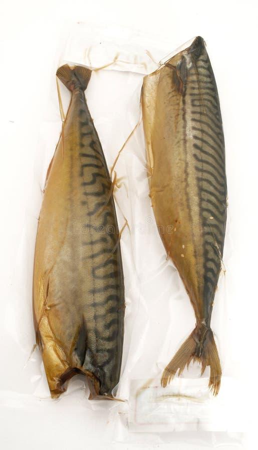 鲱鱼红色 图库摄影