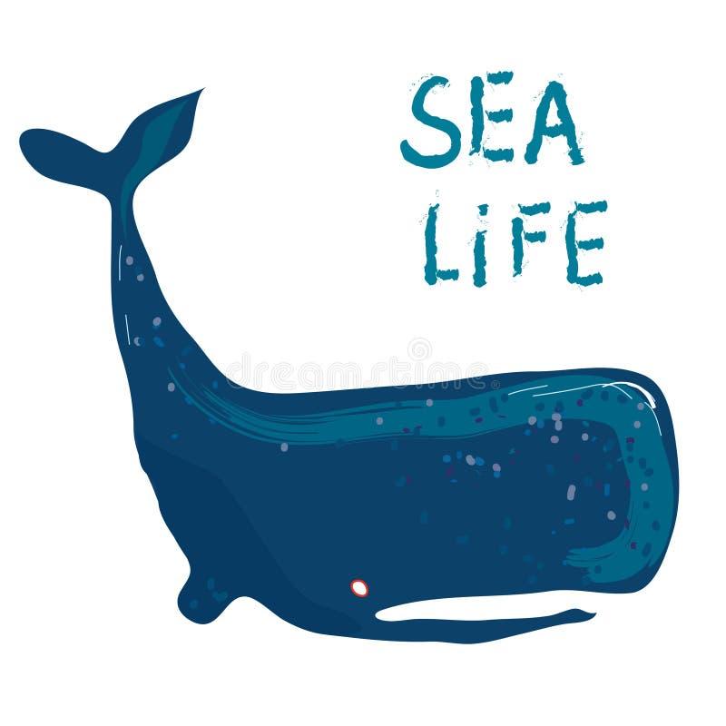 鲸鱼卡片-海洋生活或旅行的例证 库存例证