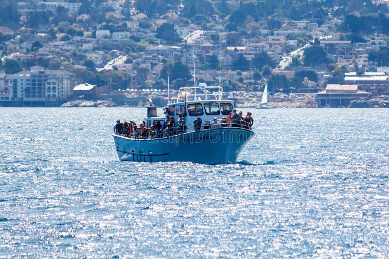 鲸鱼观看的船 库存图片