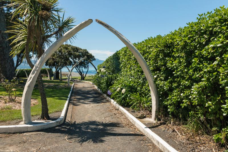 鲸鱼骨头在公园成拱形在Kaikoura,新西兰 库存图片