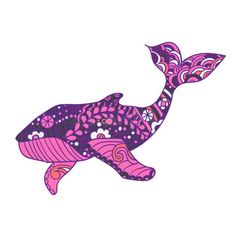 鲸鱼,传染媒介zentangle印刷品,成人着色页 手拉艺术性地,装饰物仿造了鲸鱼例证 皇族释放例证