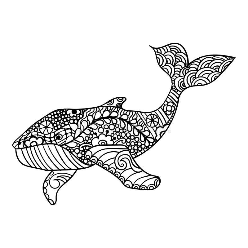 鲸鱼,传染媒介zentangle印刷品,成人着色页 手拉艺术性地,装饰物仿造了鲸鱼例证 向量例证